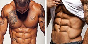 metabolismo muscolare
